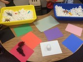 Color Sorting Activity for Center Time