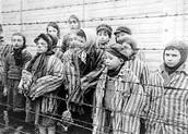 Kids Of The Holocaust
