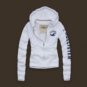HOLLISTER products