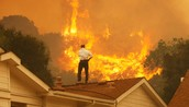 What are 2 main issues with Wild Fires?