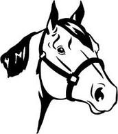 District 4-H Horse Show, June 14