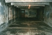 This is a gas chamber in Auschwitz