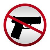 More Gun Control Laws...*