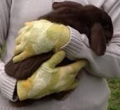 Filzhandschuhe