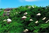 Las casas tropicales