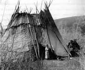 the paiutes homes