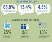 % of cyber bullying