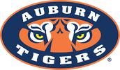 #1 Auburn University