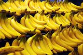 bananatastic!!