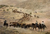 When did the Cattle Drive start?