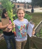 Third Grade Gardeners