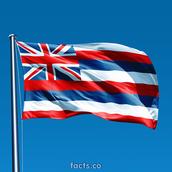 Hawaii's Flag
