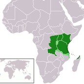 Contemporary lingua Franca- Swahili in East Africa