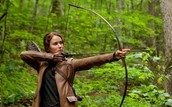 "Research Part 2 of ""The Hunger Games"""
