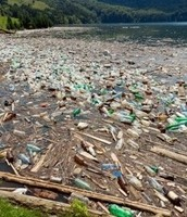 A lake filled with trash
