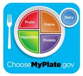 What do the dietary guidelines do for Americans