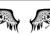 The Wings of the Valkyrie