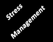Statistics on Teen Stress