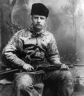 Theodore Roosevelt (before presidency)