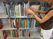 A Library Literacy Plan by Aimee Ford