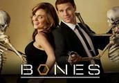 Bone lab # 2 is due tomorrow Friday Mar 1