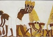 The Daily Life of Slaves and The Lower Class in Ancient Egypt