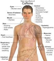 Caffeine Effects on the Body