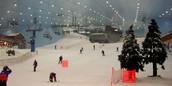 Indoor Ski/Snowboard Place