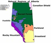 Where is the Canadian Shield located