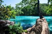 Vanuatu Offers: