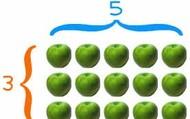 15 Apples
