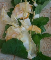 Egg and Rocket Wrap