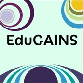 Edugains: Descriptive Feedback Viewing Guide