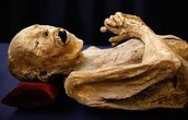 another rotted mummy