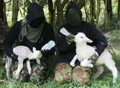 Eco-Terrorists.
