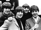 About the Beatle
