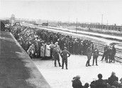 Arriving at Concentration Camps