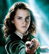 Hermoine granger (supporting character)