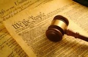 Protections in the Constitution