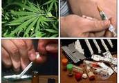 Examples of Hallucinogens