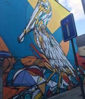 Van Dzia - De pelikaan