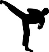 Kicking Person