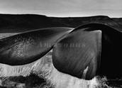 Baleias [2005]