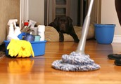 Making an investment in Hiring The Best possible Home Cleaners in Vancouver