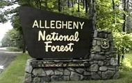 Allegheny