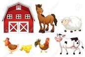 """""""Farm"""""""