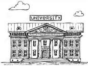 LTN University