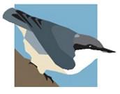 Sequoia Audubon Society