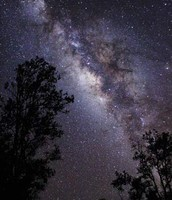 a picture in the woods looking at another galaxy