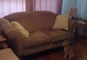 Brown Fabric Loveseat -- $75